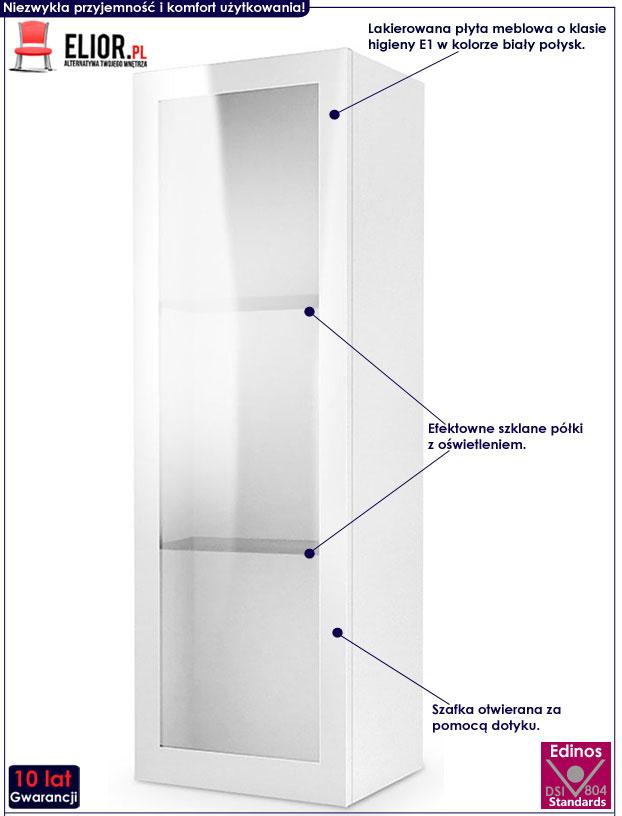 Biała szafka wisząca z witryną i oświetleniem Vomes 10X